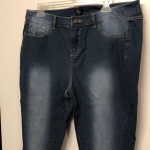 NWOT Gill jeans plus size